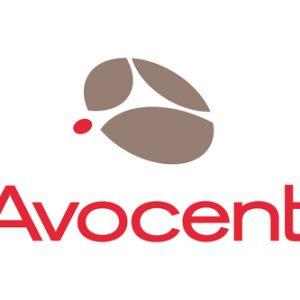 Vertiv Avocent 1YSLV-AV warranty/support extension